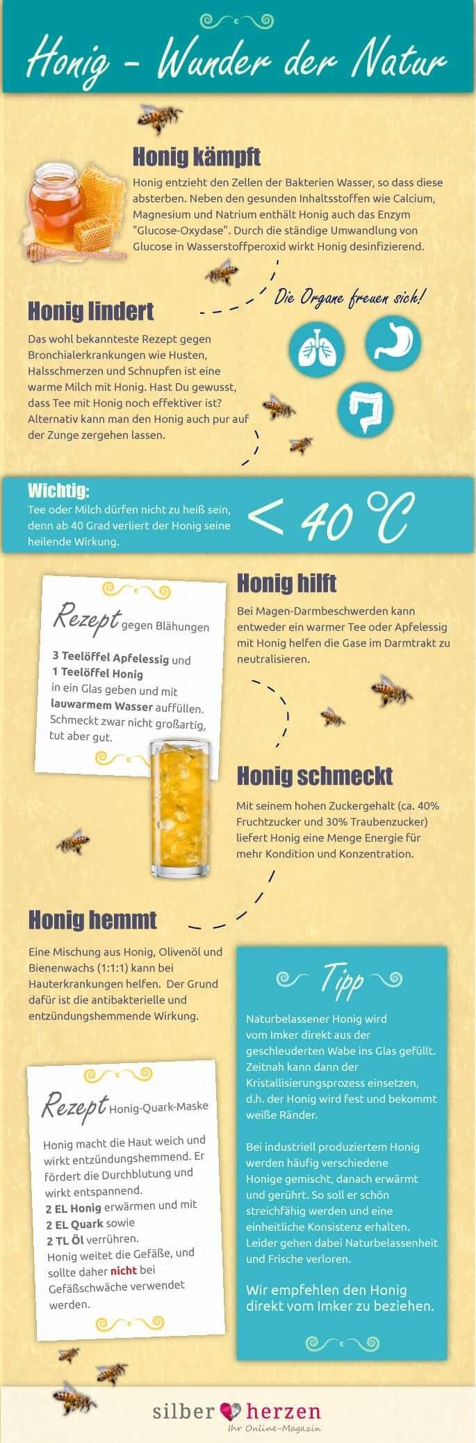 Infografik Eigenschaften von Honig