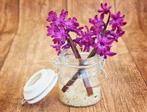 Einmachglas mit Blume