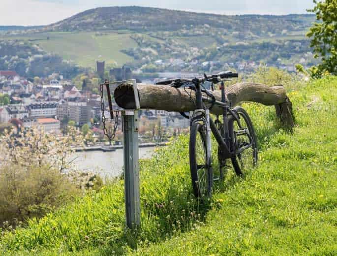 Fahrrad am Weinberg