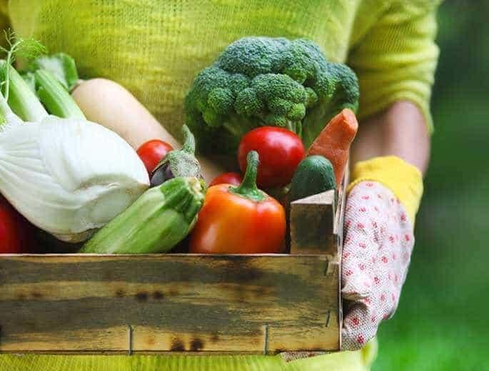 Selbstversorgung Gemüse