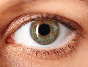 Augenfarbe Haselnuss