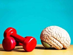 Regelmäßige Bewegung Gehirn