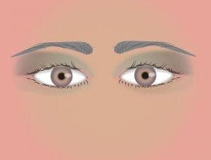 Lidschatten eng stehende Augen