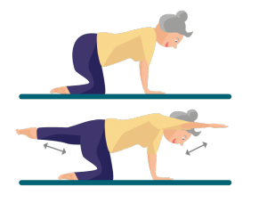 Rückenübung Arm-Bein-Hebung