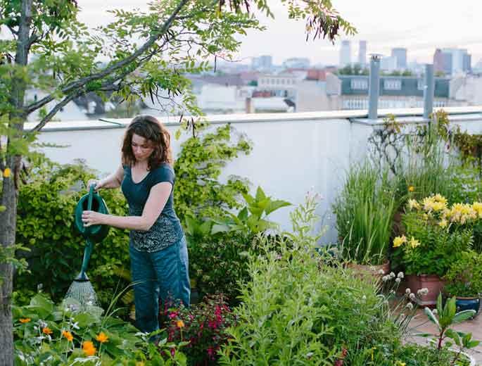 Frau gießt Pflanzen