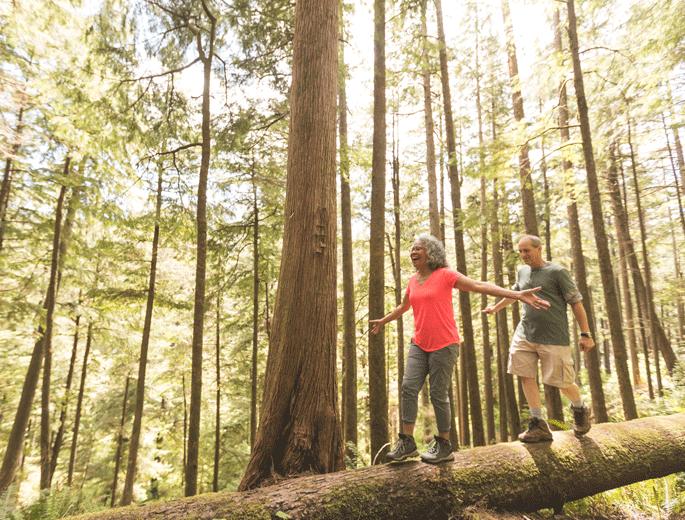 Naturverbundenheit Spaziergang Wald