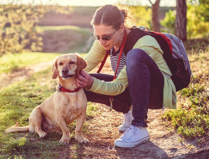 Frau mit Hund im Wald p