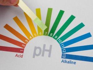 Säure-Basen-Ernährung pH-Wert