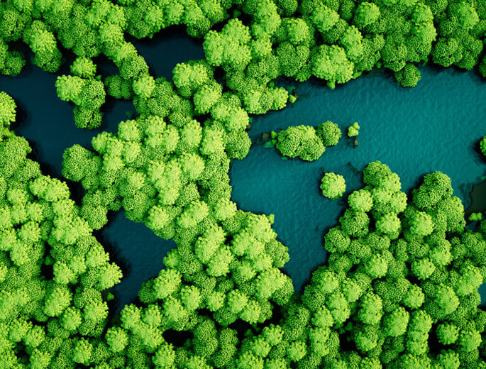 Weltkarte als Seen in Wald - Grünes Reisen
