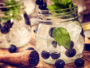 Blaubeer Gin