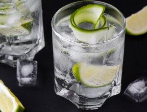 5 leckere gin tonic rezepte. Black Bedroom Furniture Sets. Home Design Ideas