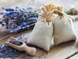 Motten loswerden Lavendelsäckchen