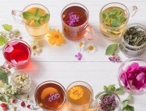Verschiedene Kräuter Tees